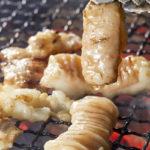 焼肉で人気!牛の4つの胃「ミノ・ハチノス・センマイ・ギアラ」の特徴